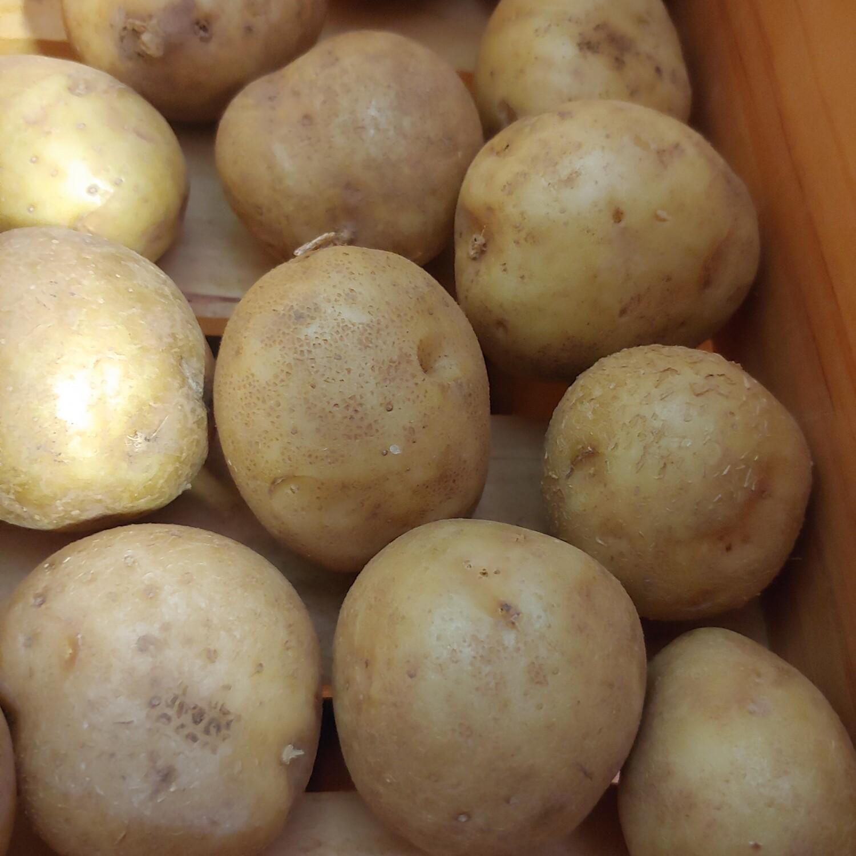 potatoes, yellow; 1# bag; Garrett Growers