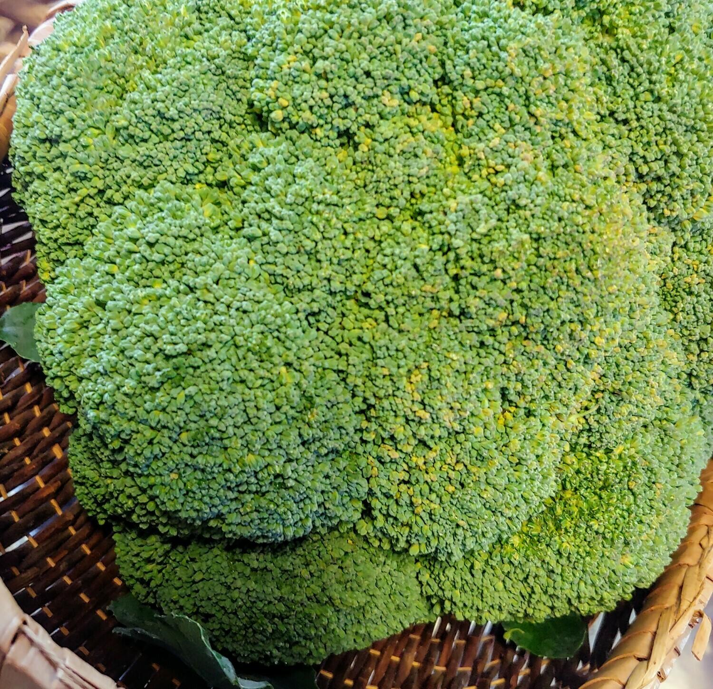 broccoli, per head; Garrett Growers
