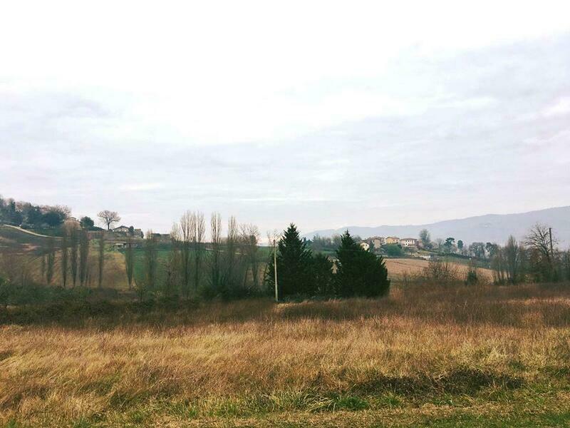 VICINANZE TRESTINA. Appezzamento di terreno agricolo di 700 mq