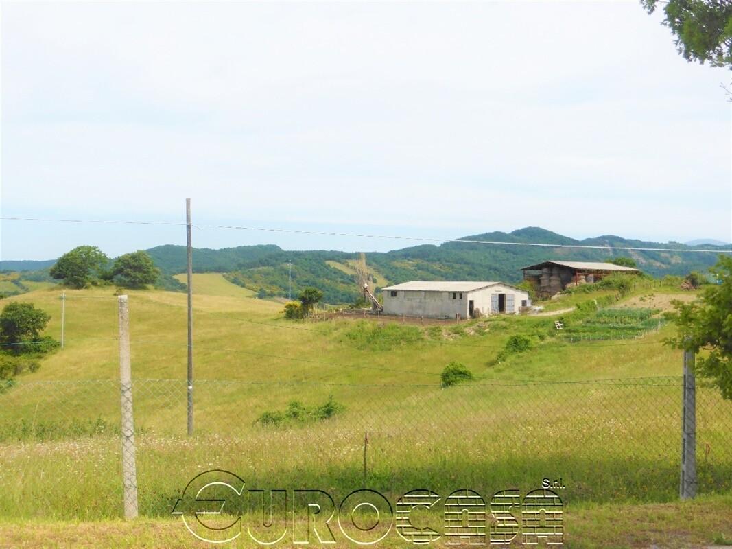 GUBBIO. Azienda di 33 ettari con stalla, fienile e piccolo casale