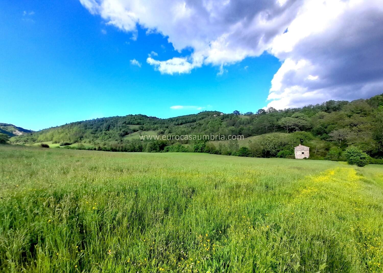 ANTIRATA. Casa rurale di 100 mq con ampio terreno