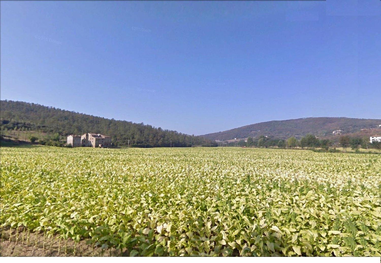 CITTA' DI CASTELLO. Azienda agraria con 47 ha e due casali