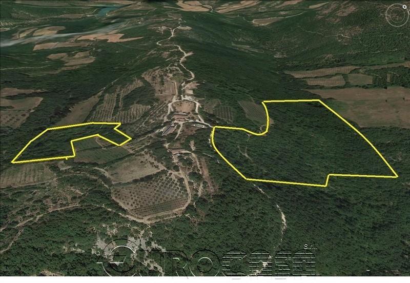 UMBERTIDE. Terreno boschivo di 18,50 ha in loc. Monestevole