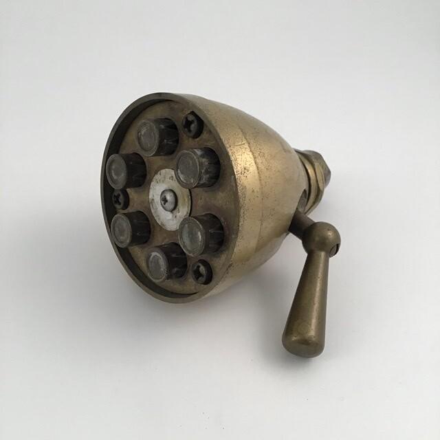 Antique Brass Shower Head