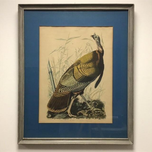 Reproduction John J Audubon Wild Turkey Plate From Birds Of America