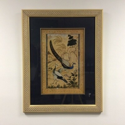 Framed Peacock Print