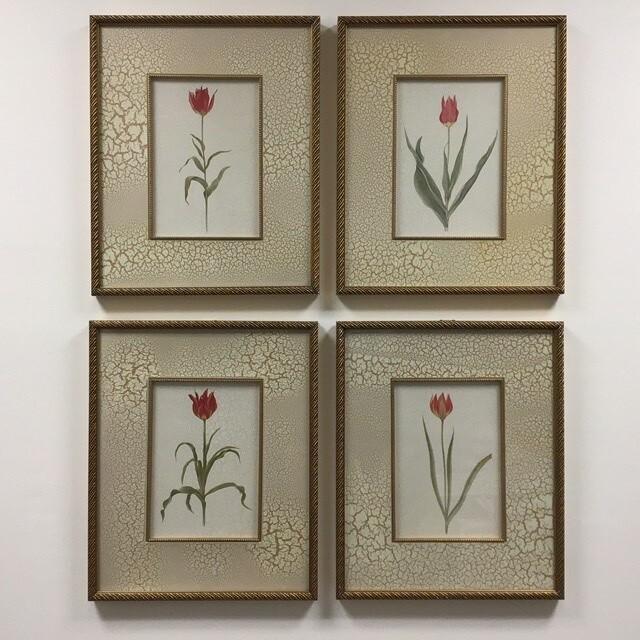 Set Of Four Framed Flower Prints
