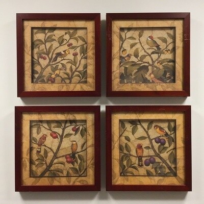 Set Of Four Framed Bird Pictures