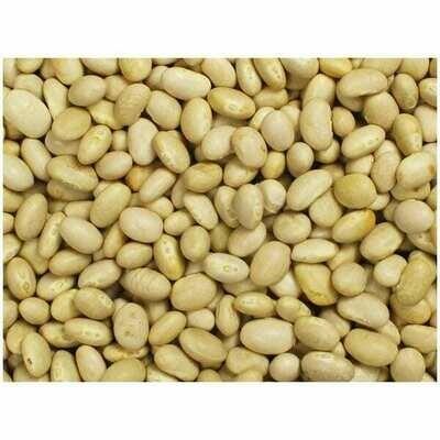 Navy Beans 15 Oz