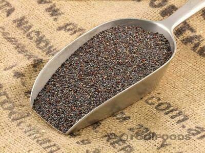 Poppy Seeds 8 Oz