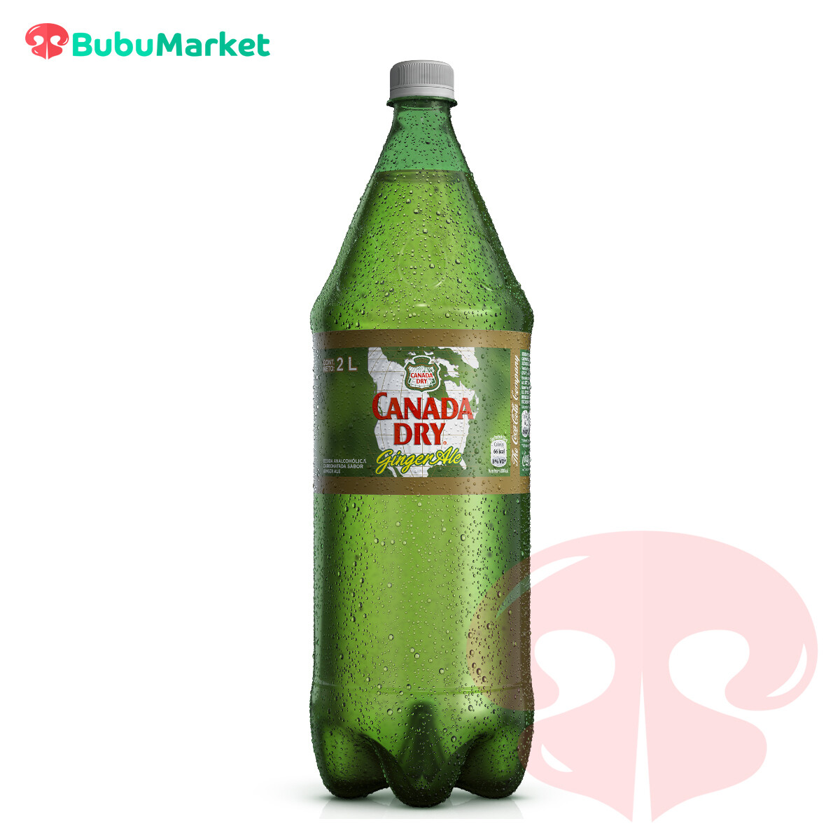 CANADA DRY GINGER ALE 2 L.