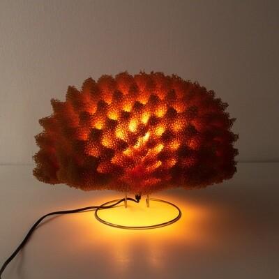 Genesi table lamp designed by Masayo Ave for Antonangeli