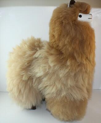 Alpaca 12
