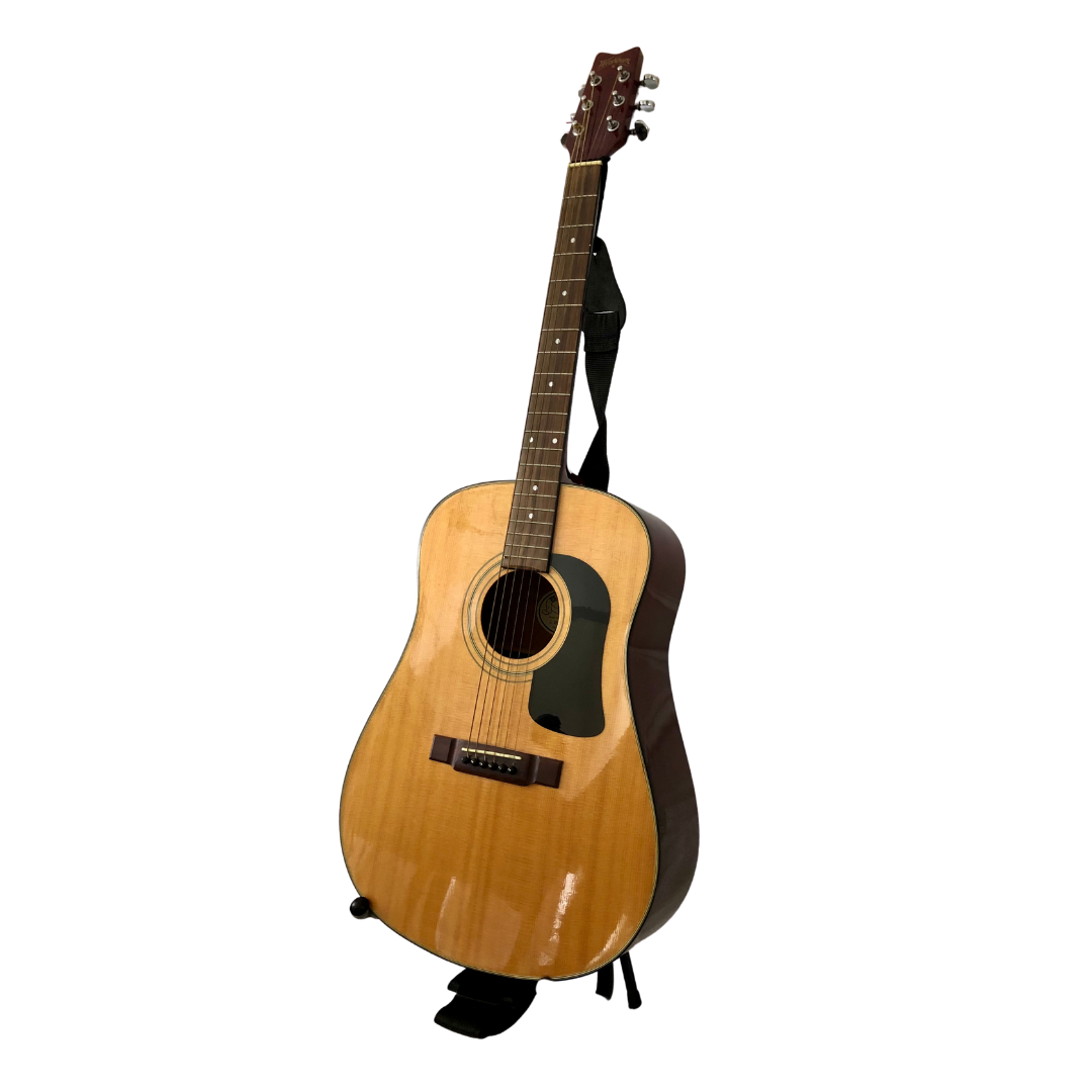George Washburn Acoustic Guitar Model D10