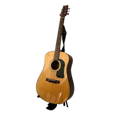 George Washburn Acoustic Guitar Model D10