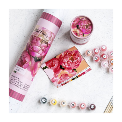 Pink Picasso Petal Power Paint By Numbers Kit