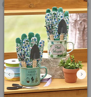 Garden Tool Mug Gift Set