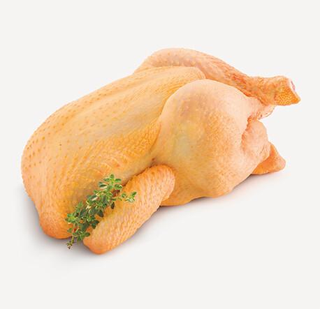 Pollo Campesino entero (4 lb. Aprox)