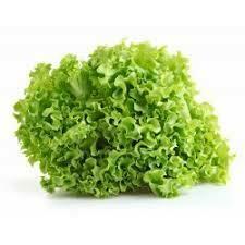 Lechuga Crespa verde x 220gr
