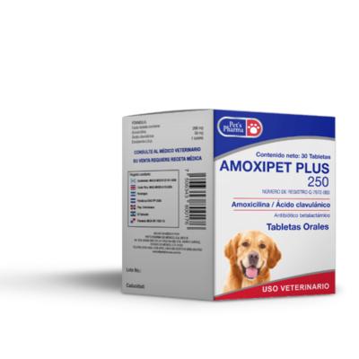 Amoxipet Plus 250