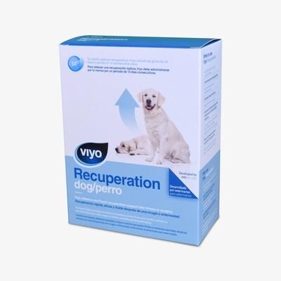 Viyo Recuperación para Perros