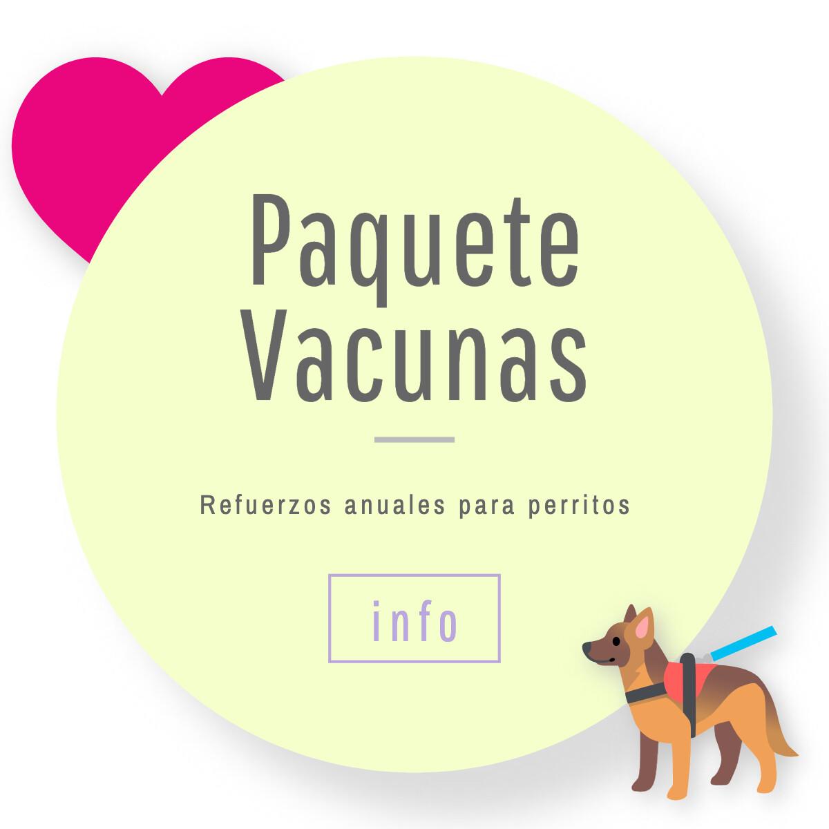 Vacunas Anuales para Perritos