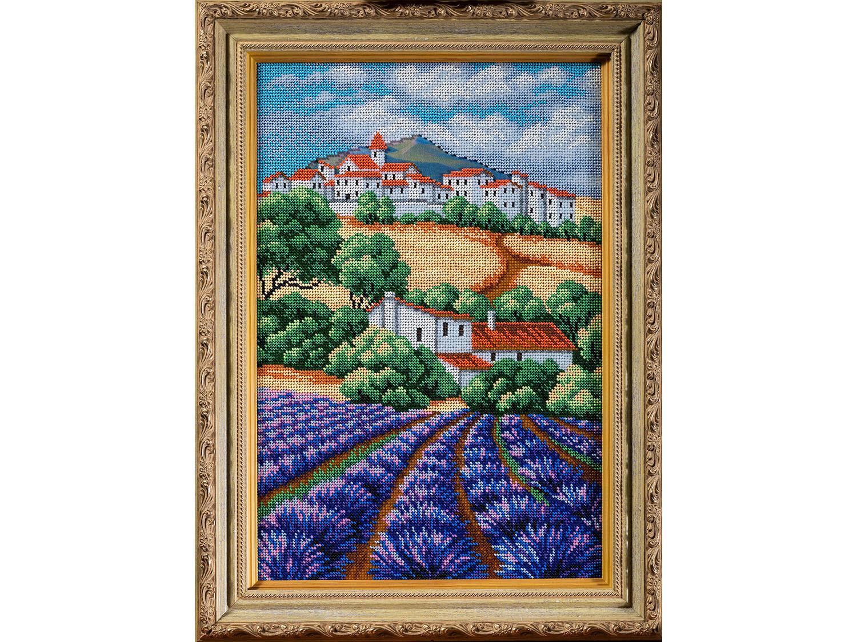 Lavender field. Provence