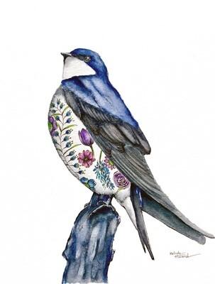 8x10 Swallow - Tattoo Bird Series Print