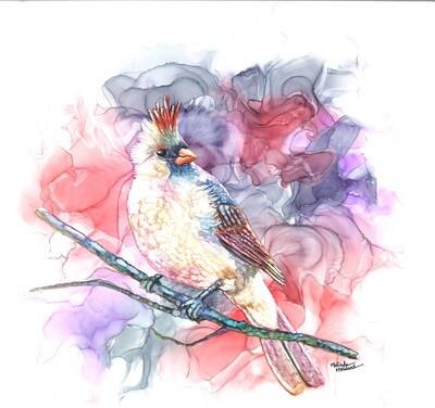 12x12 Female Cardinal - Alcohol Ink Bird Series Print