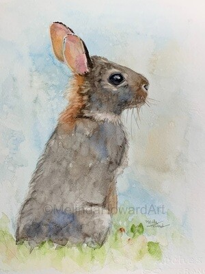 Original Watercolor Bunny Painting - Textured Background Series