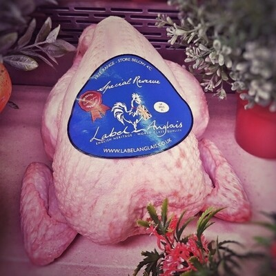 Label Anglais Free Range Chicken