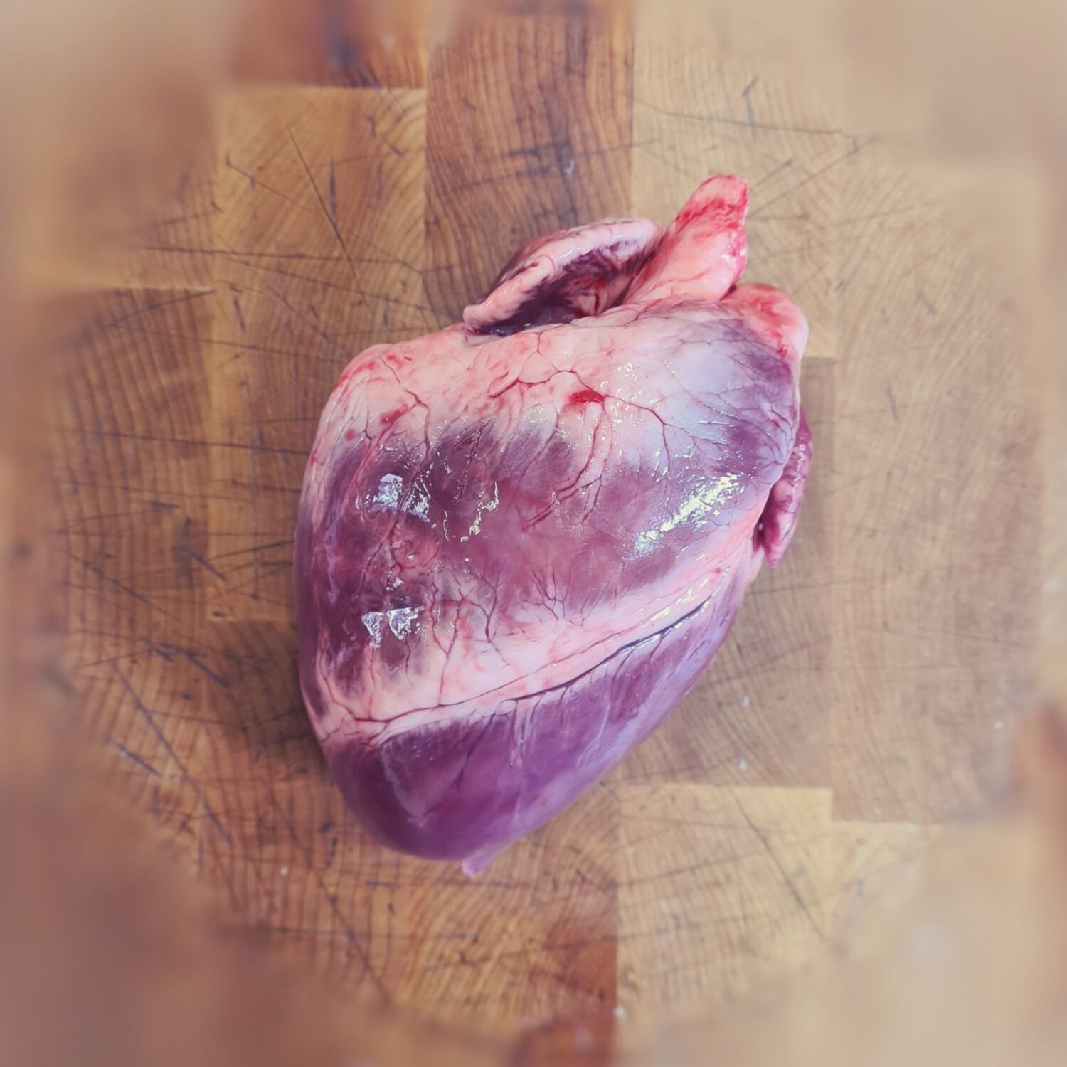 Rare Breed Pigs Heart