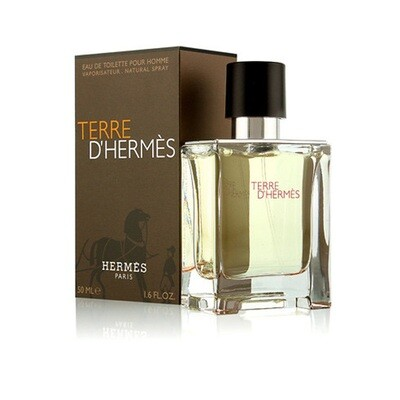 Terre D'Hermes Cologne By Hermes For Men