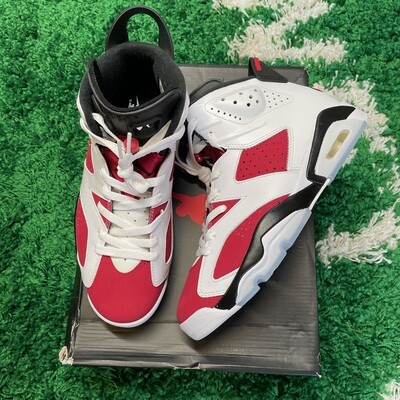 Air Jordan 6 Carmine 2021 Size 8.5