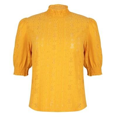 MO67 yellow