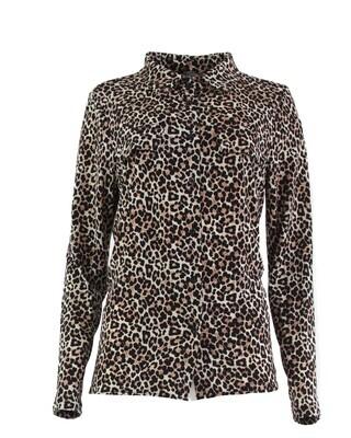 16929 leopard