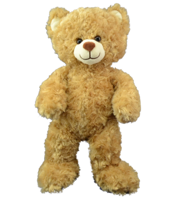 Pookie the Bear - Build A Plush Bundle - 16 inches