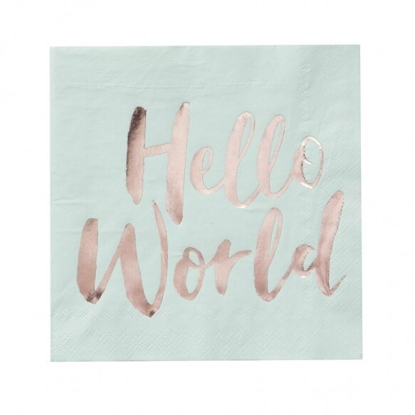 20 Mint & Rose Gold Paper Napkins - Hello World