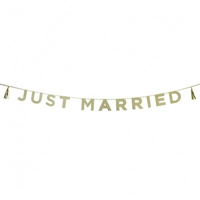 Glitter 'Just Married' Banner