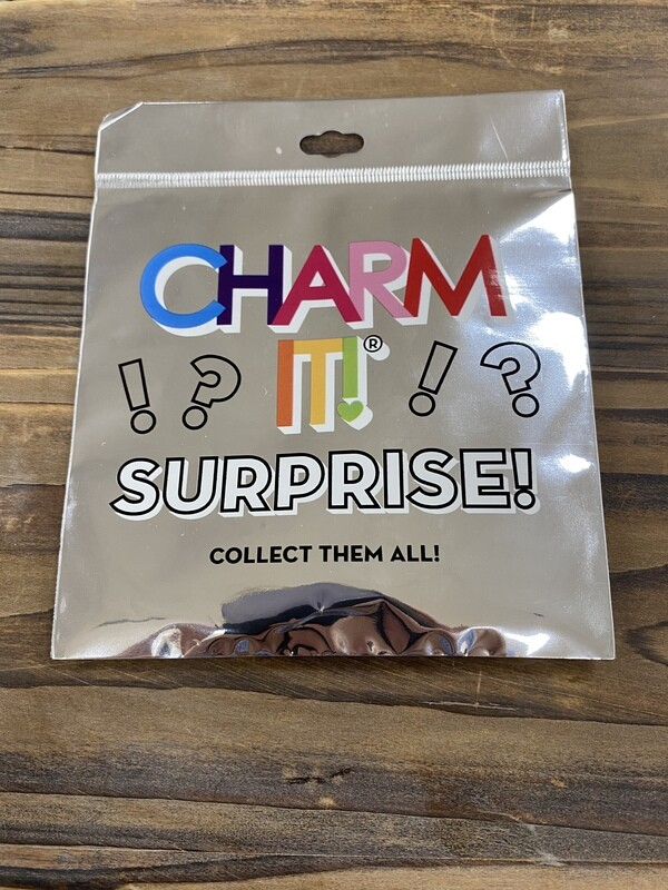 Charm It Surprise Charms