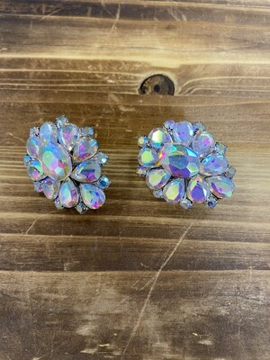 AB Clip On Earrings
