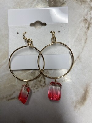 Circle Earrings with Clear Drop Stone
