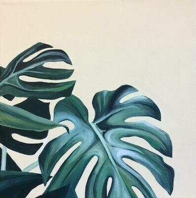 Philodendron Study