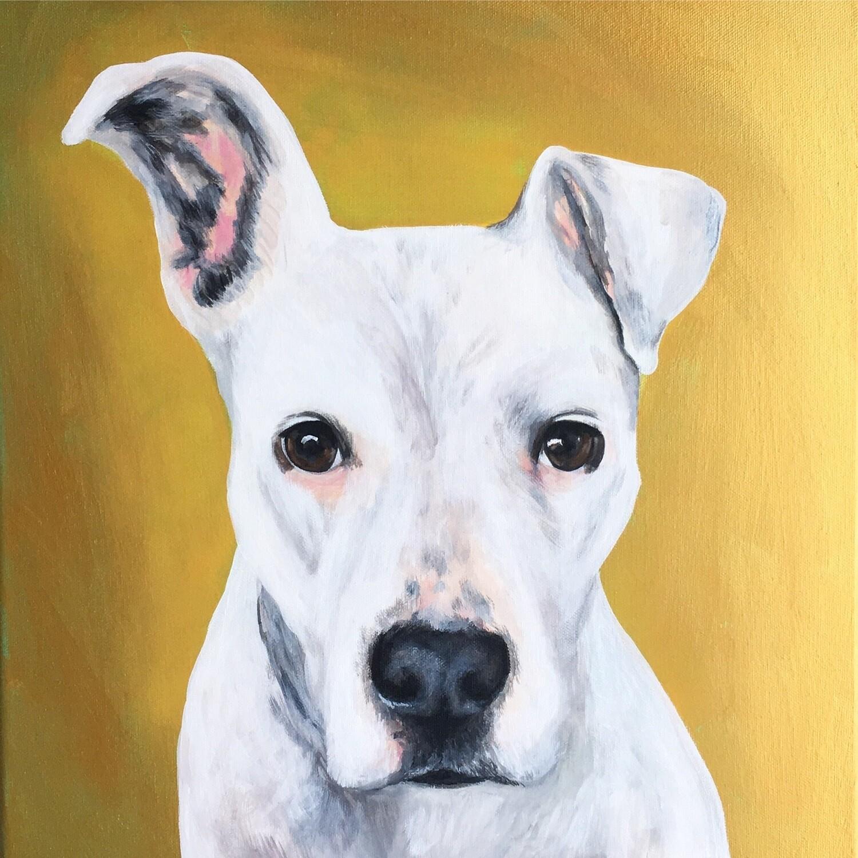 8x10 Custom painted pet portrait