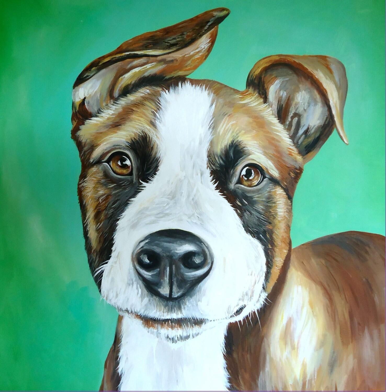 16x20 Custom Painted Pet Portrait
