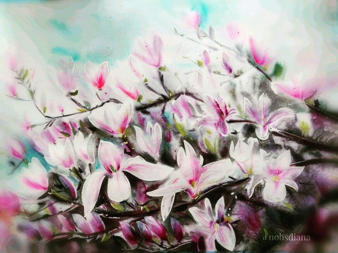 Magnolia /Limited edition