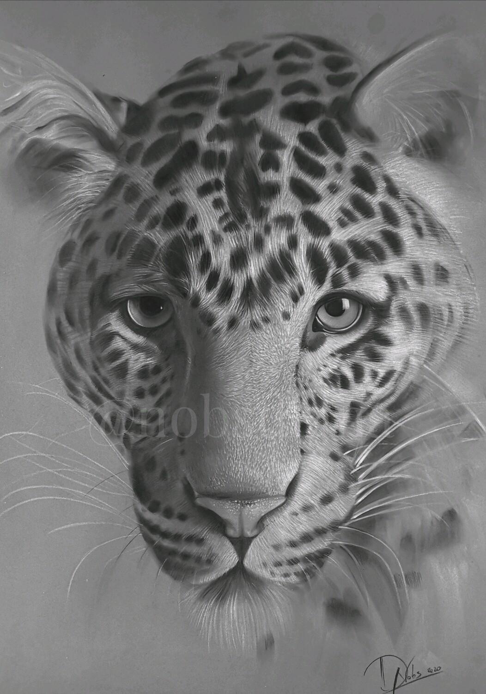 Jaguar /Limited edition print