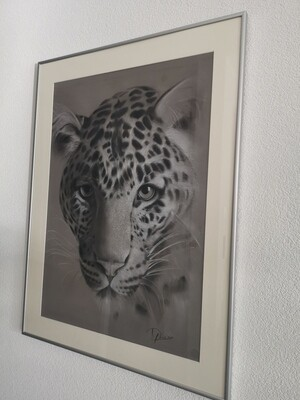 Jaguar I /Original