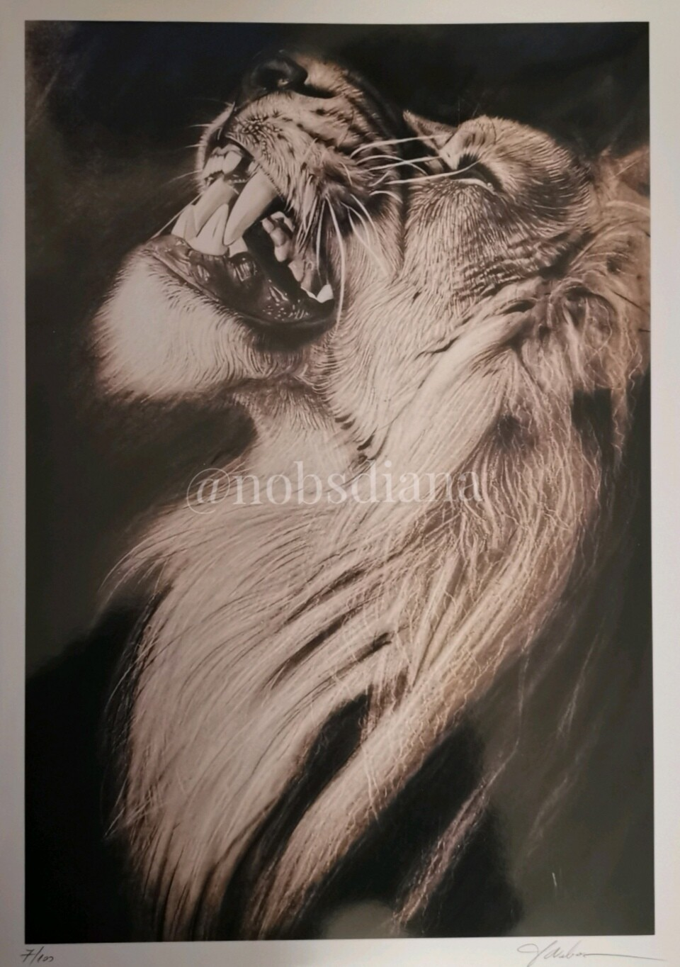The King's wrath / Limited edition print
