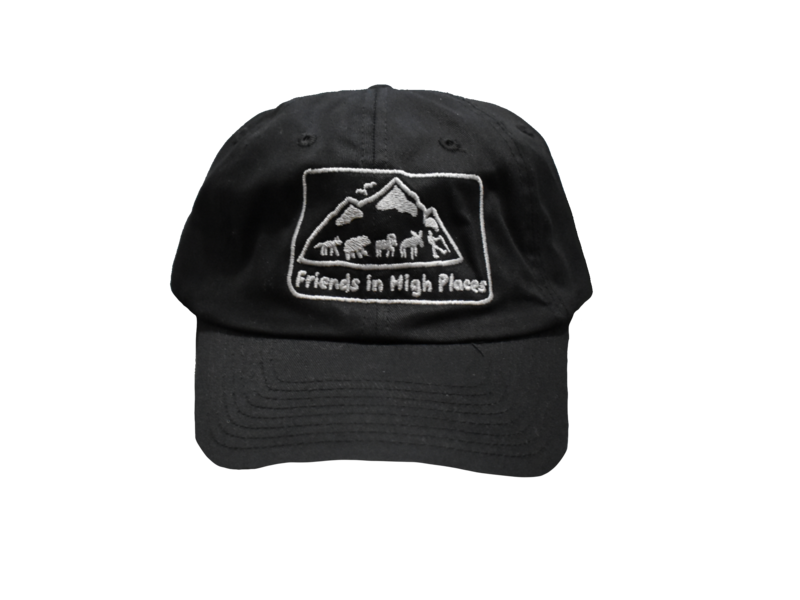 Friends in High Places Logo Hat - Black
